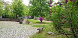 Schule_am_Zille-Park_2