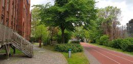 Schule_am_Zille-Park_4